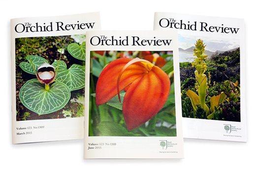 Resultado de imagem para orchid review magazine