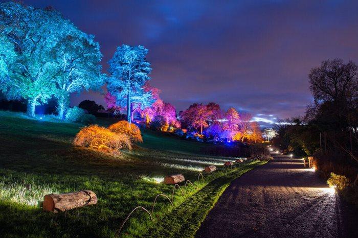 Glow 2020 Walks At Rhs Garden Wisley Fun Family Days Out Events In Surrey Rhs Gardening