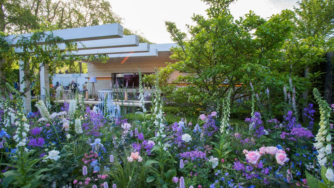 Rhs chelsea flower show 2016 rhs gardening - Chelsea garden show ...