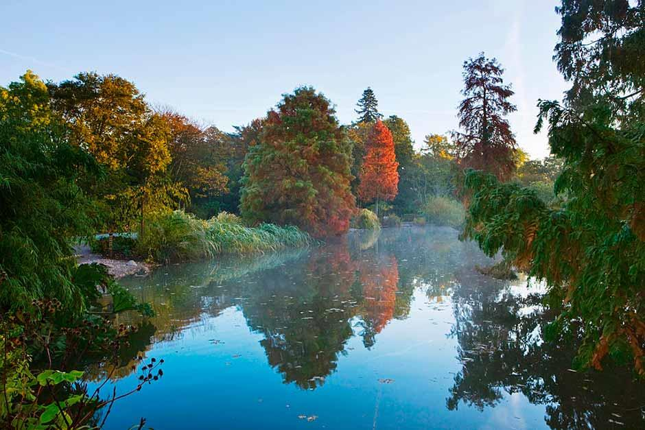 Seven Acres lake, Wisley