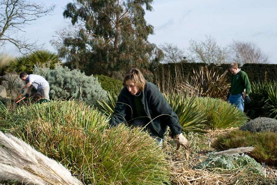 find out about opportunities for working with the rhs