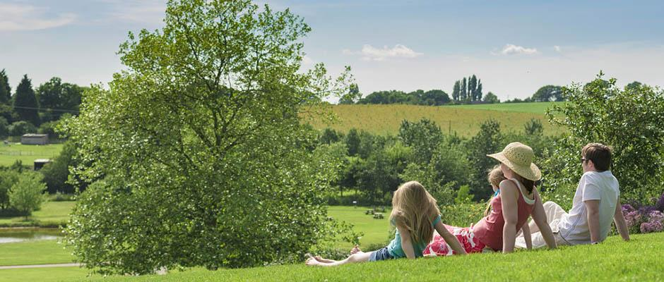 Relax on Clover Hill in summer