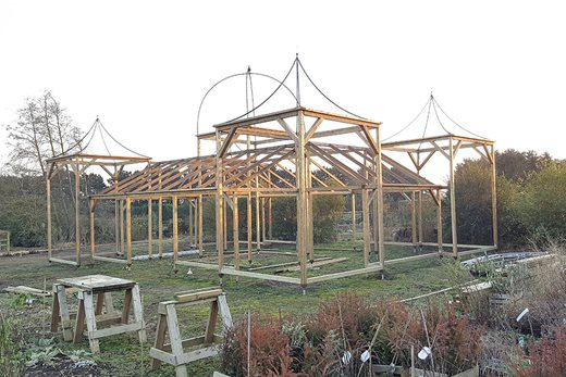 The fruit cage under construction at East Ruston Old Vicarage