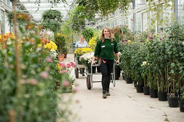 Gardening training with rhs school of horticulture rhs for Gardening qualifications