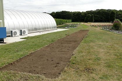 Strips of turf removed for solar panels at Deers Farm