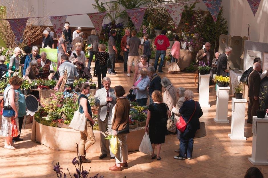 Rhs Summer Urban Garden Show / Rhs Gardening