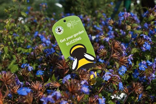 Plants for Pollinators label