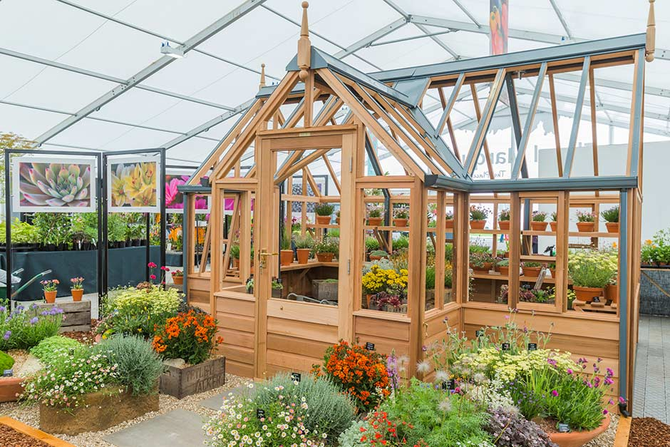 Master Grower: D'Arcy & Everest display