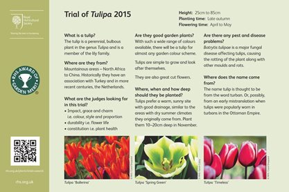 Tulip trial interpretation board