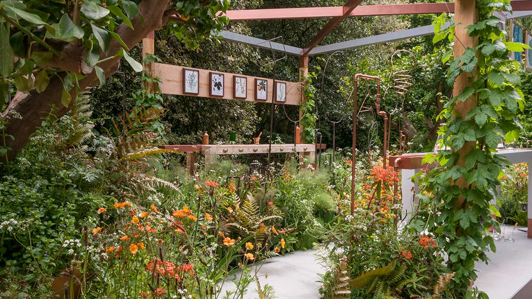 See the seedlip garden at rhs chelsea flower show 2017 for Chelsea 2017 show gardens
