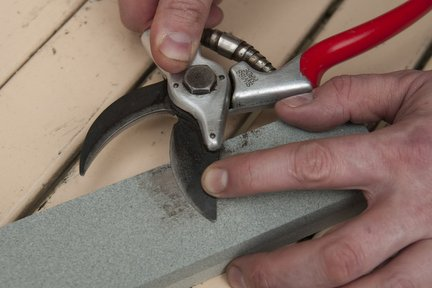 Sharpening hand tools / RHS Gardening