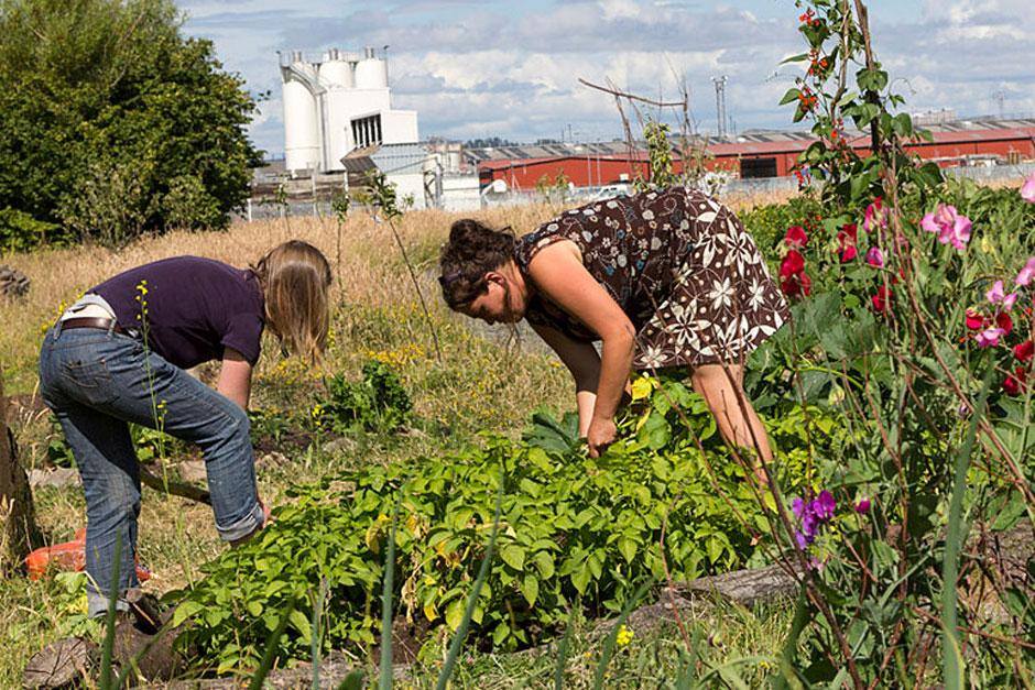 Two women working on community garden
