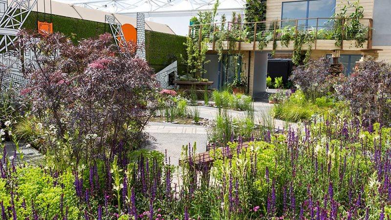 Rhs chelsea flower show 2017 gardens rhs gardening for Chelsea 2017 show gardens