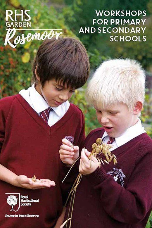 Rosemoor Workshops for Schools