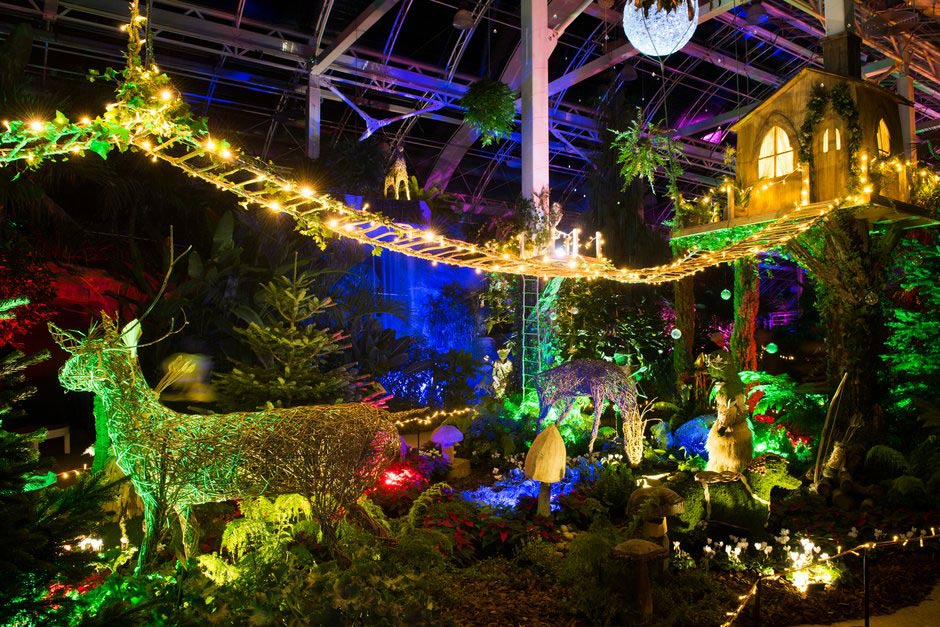 Christmas Glow at Wisley 2017/18 / RHS Gardening