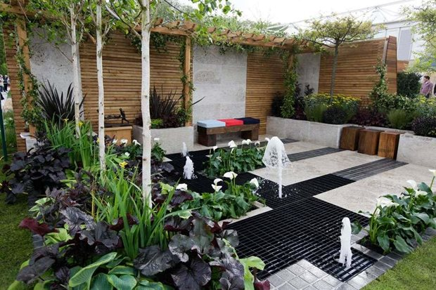 Rhs tips on styling your contemporary garden rhs gardening for Garden planting ideas uk