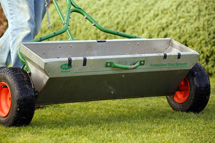 Apply fertiliser while the lawn is still growing strongly to improve the colour of the lawn. Credit:Neil Hepworth/RHS The Garden