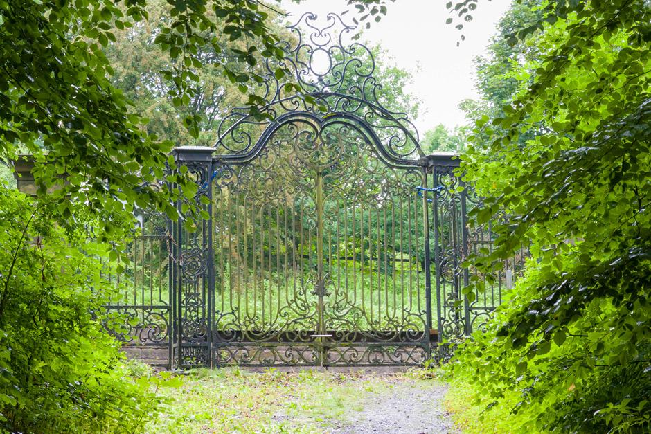 Support RHS Garden Bridgewater / RHS Gardening