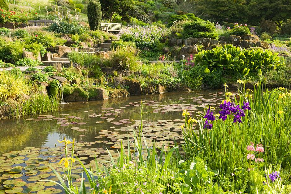 rhs garden wisley days and events in surrey rhs gardening