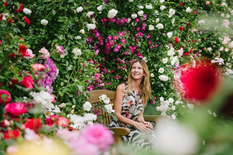 Visitor sits among roses in the Great Pavilion at Chelsea