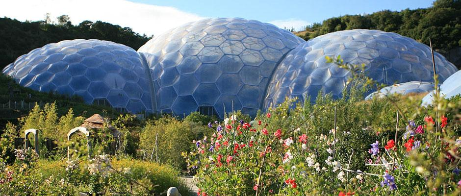 Summer at the Eden Project