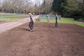 Firming the soil on the Trials Field at RHS Garden Wisley