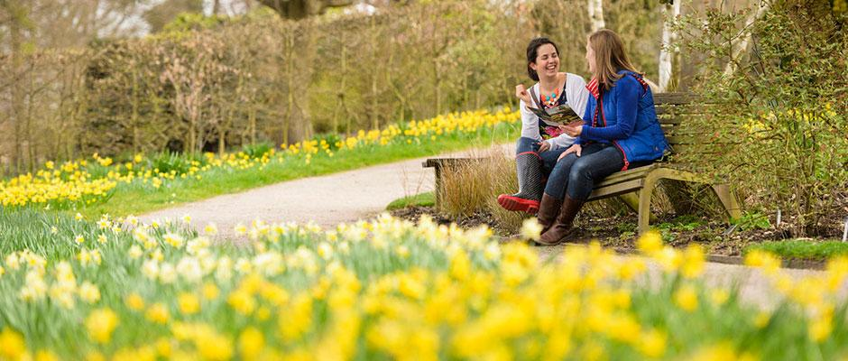 Visitors with daffodils