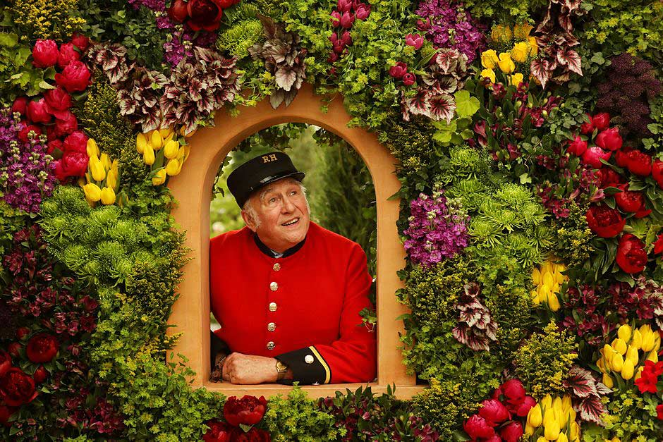 a Chelsea Pensionser looks out of a floral window display
