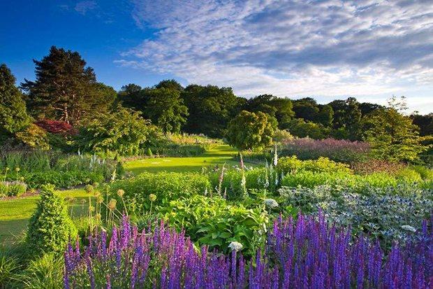 RHS Tatton Park Flower show RHS_RHS0000220.jpg?width=620&height=413&ext=