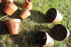 Clay pots filled with straw