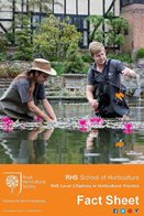 Diploma in Horticultural Practice Level 3 Factsheet