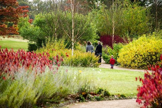 Must-see highlights at RHS Garden Harlow Carr / RHS Gardening