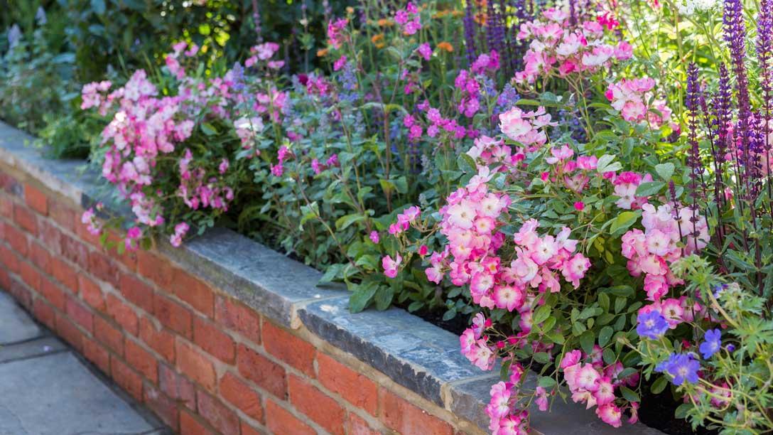 The Harrods British Eccentrics Garden