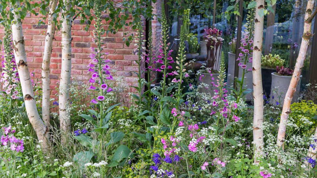 The Hartley Botanic Garden