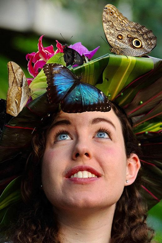 Anna Platoni poses with Blue Morpho and Owl (r) butterflies on a floral hat