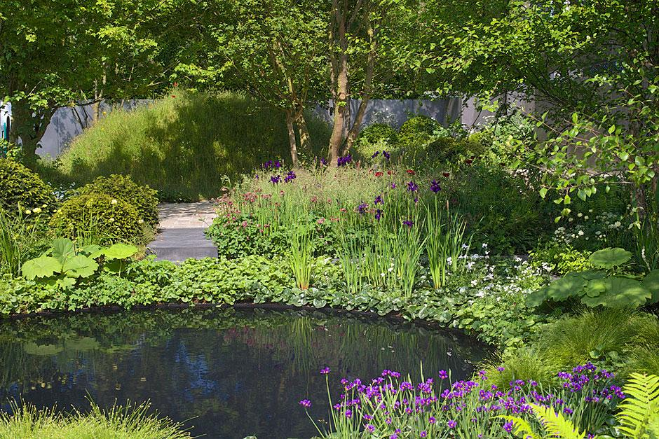 Submitting a garden design to rhs chelsea flower show for Chelsea 2017 show gardens