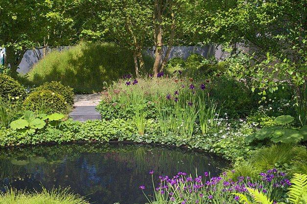 Submitting a garden design to rhs chelsea flower show for Garden design 2015