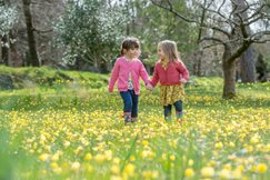 Children walking amongst daffodils