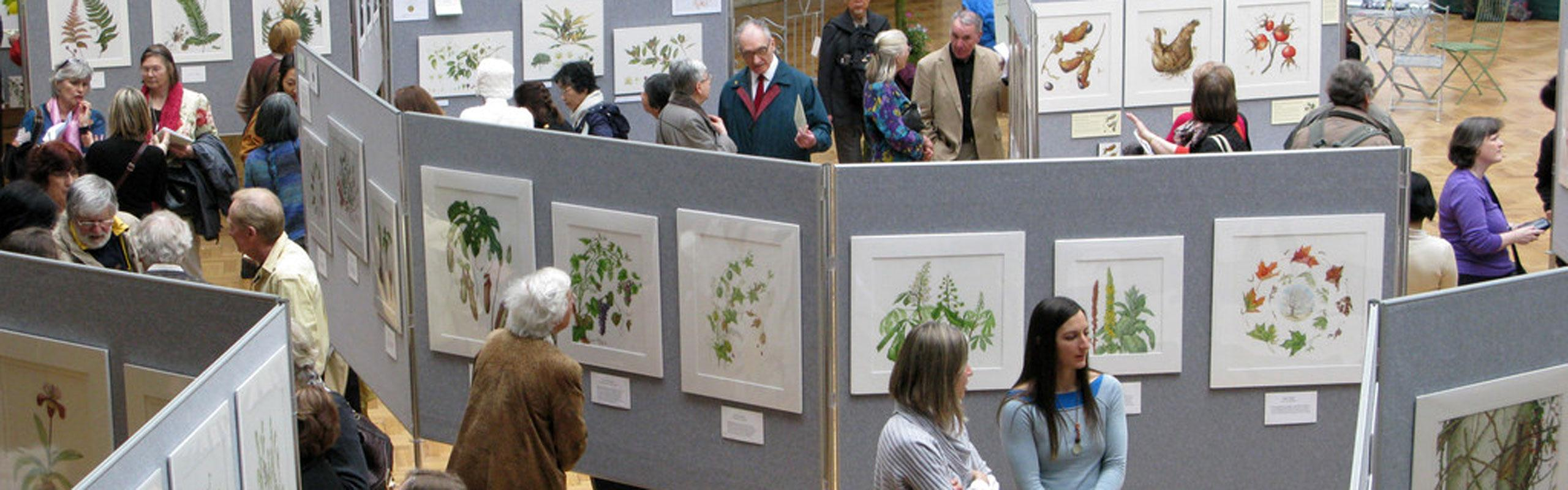Botanical Art Show