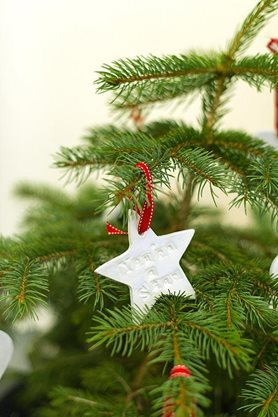 Christmas tree and decoration