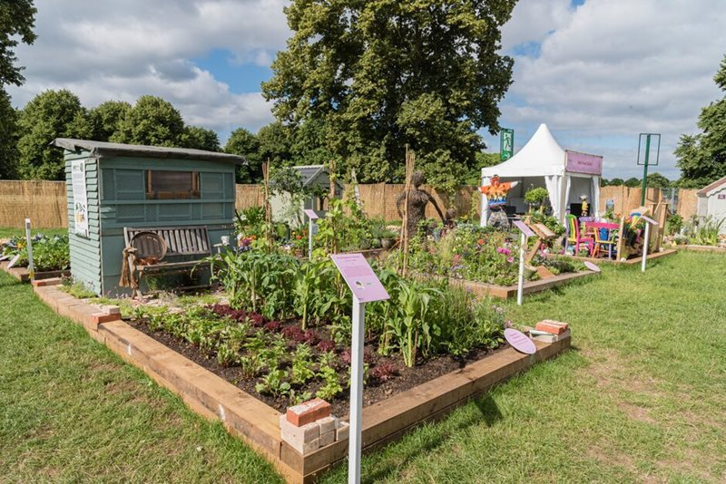 The Community Allotments