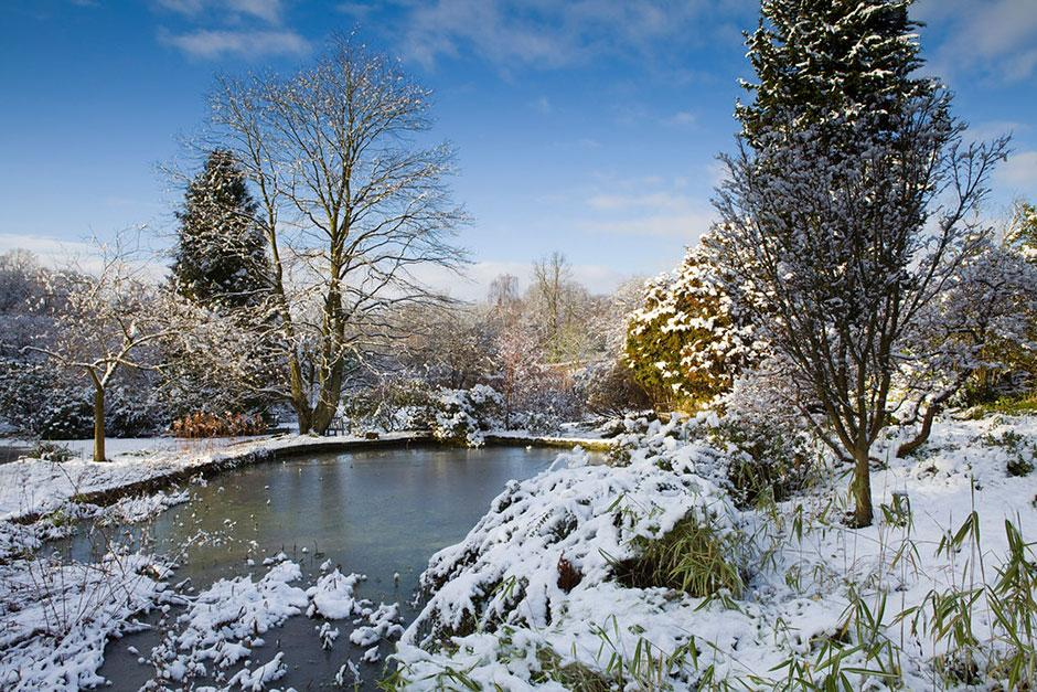 Harlow Carr under snow