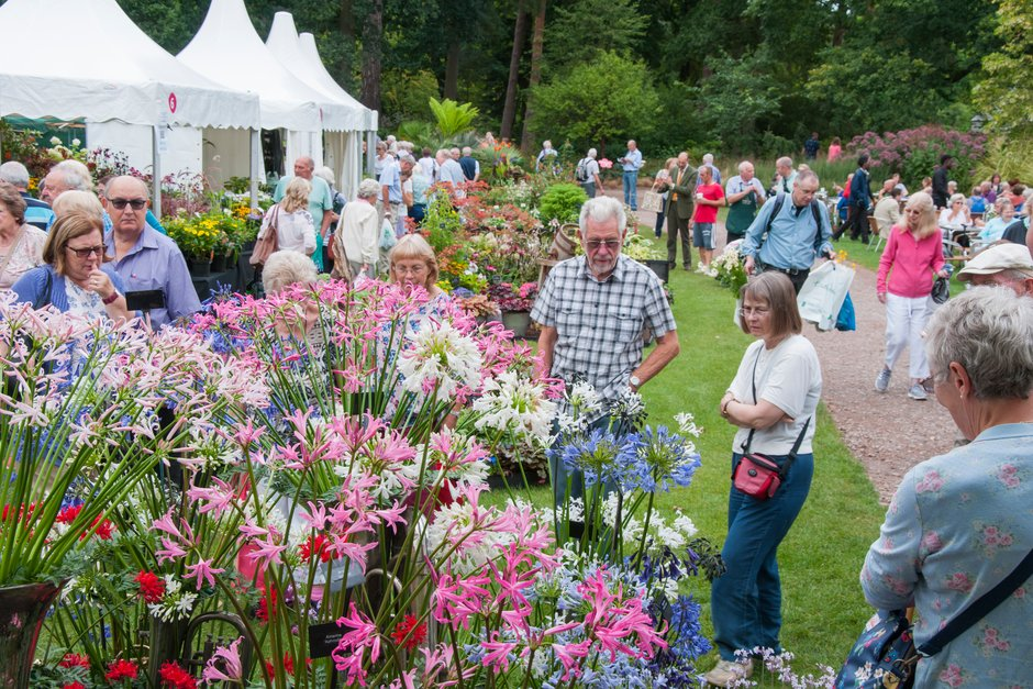 Visitors with Nerine displays