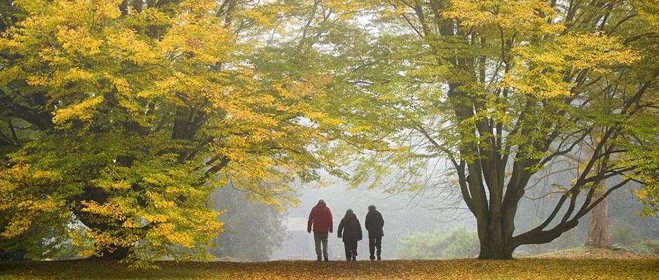 Family walking in the Pinetum, autumn