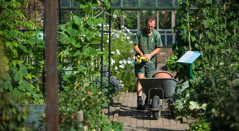 Gardening training and qualifications rhs gardening for Gardening qualifications