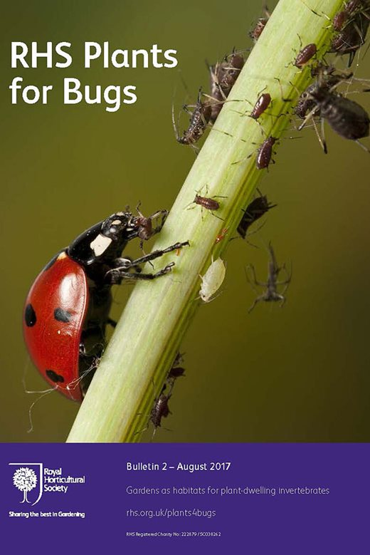 RHS Plants for Bugs - Bulletin 2 (opens in a new window)