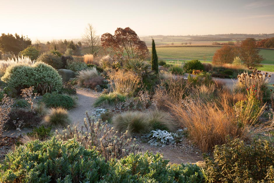 Dry Garden in winter at RHS Garden Hyde Hall