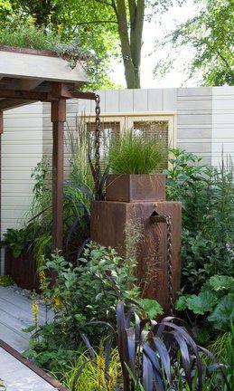 Rain gardens / RHS Gardening