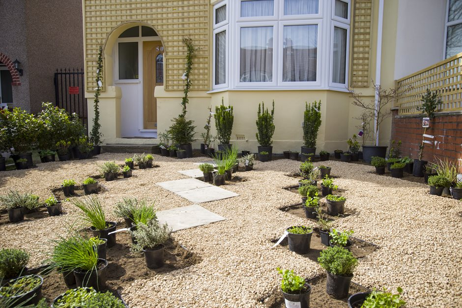 How To Green Your Grey Front Garden