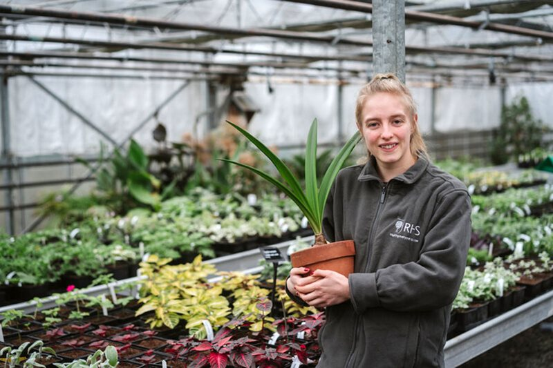 Apprentice at work in Harlow Carr